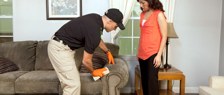 San Luis Obispo, CA carpet upholstery cleaning